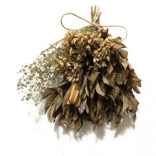 アナベルのアンティークなブラウンスワッグ  ドライフラワー 花材 素材 E(ドライフラワー)