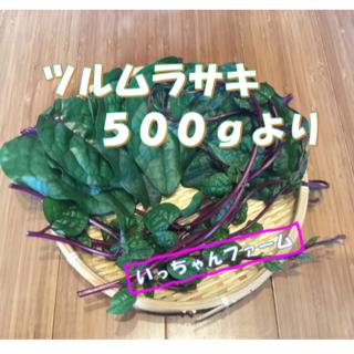 安全・安心野菜 紫茎系つるむらさき 500gより(野菜)