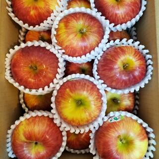 シャキッと硬めのリンゴ!! ニュージーランド産「ふじ」超小玉サイズ(フルーツ)