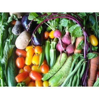 野菜詰め合わせ 農薬・化学肥料不使用(茶)