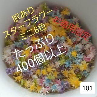 訳あり101スターフラワーミニ8色 400個(ドライフラワー)