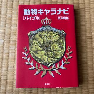 シュウエイシャ(集英社)の動物キャラナビ「バイブル」(趣味/スポーツ/実用)
