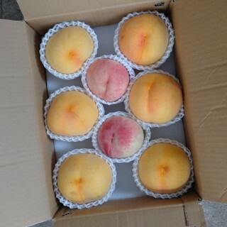 桃 果物 山梨県 2種類 1ケースのみ。(フルーツ)