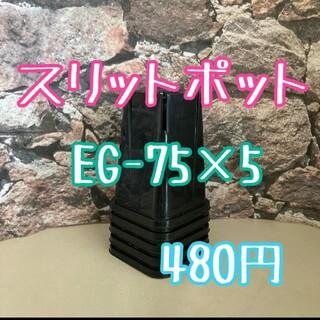 ロング スリットポット EG-75L slitpot プラ鉢 KANEYA (その他)