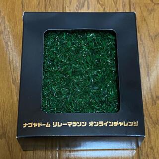 中日ドラゴンズ - ドラゴンズ バンテリンドーム(旧ナゴヤドーム)実使用人工芝