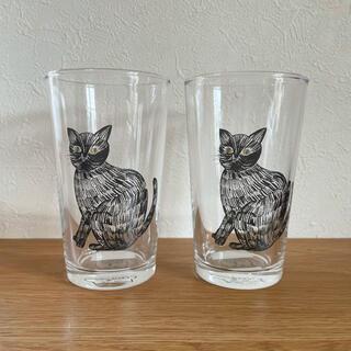 STUDIO CLIP - 未使用 松尾ミユキ 猫 ねこ ネコ グラス コップ 2個セット 新品同様