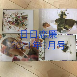 ジャニーズ(Johnny's)の日日恋廉 17日目(アート/エンタメ/ホビー)