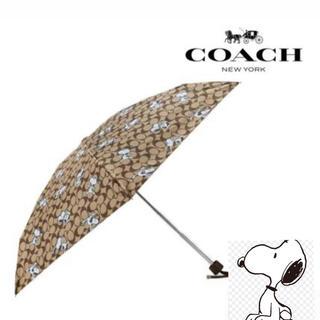 コーチ(COACH)のCOACH X PEANUTS 折り畳み傘 日傘、雨傘兼用可(傘)