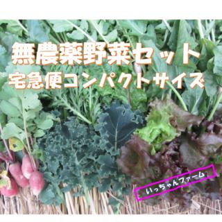 にゃ〜お☆様専用 リクエストお野菜中心に コンパクトボックスにて(野菜)