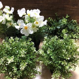 植物飾り ウェディングアイテム(その他)