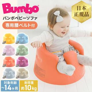 バンボ(Bumbo)のBumbo バンボ アクア ベルト付き(その他)