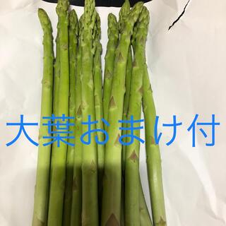 アスパラ500(野菜)