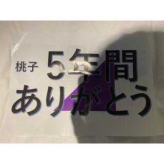 ノギザカフォーティーシックス(乃木坂46)の乃木坂46 大園桃子 卒業コンサート フライヤー(アイドルグッズ)