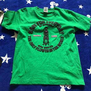ジムマスター(GYM MASTER)のジム マスター 美品 グリーン Tシャツ(Tシャツ/カットソー(半袖/袖なし))