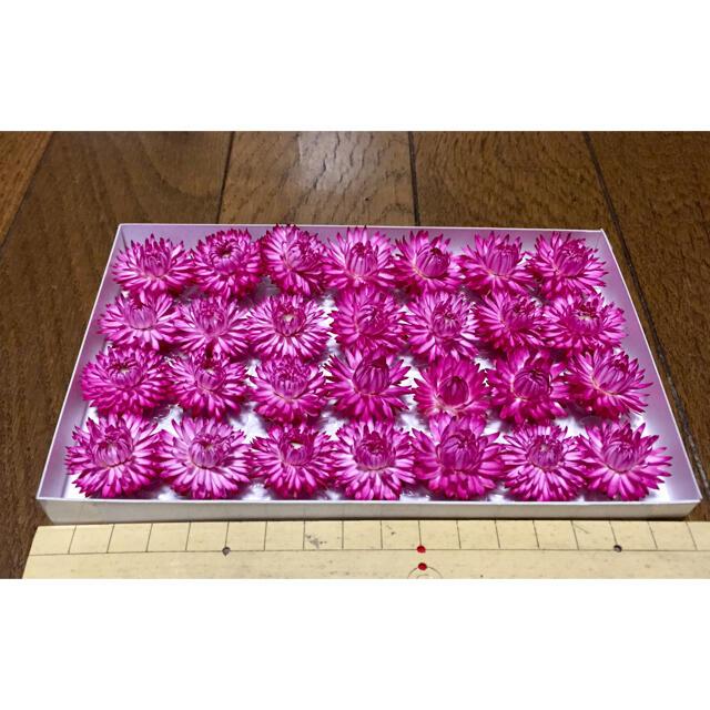 c①  銀の紫陽花が作った帝王貝細工「コロロ・フランボワーズ」です ハンドメイドのフラワー/ガーデン(ドライフラワー)の商品写真
