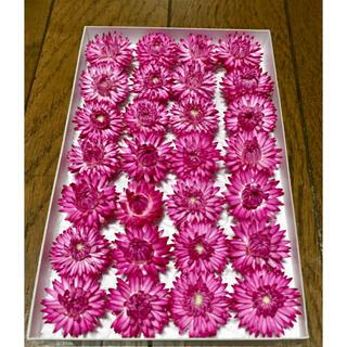 c①  銀の紫陽花が作った帝王貝細工「コロロ・フランボワーズ」です(ドライフラワー)