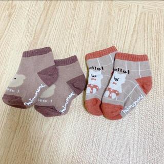 しまむら - しまむら ミモランド クマさん ベビー靴下 セット