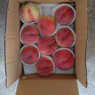 桃 果物 山梨県 1ケースのみ。(フルーツ)