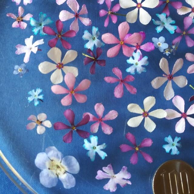 purearoma様 専用ページ ハンドメイドのフラワー/ガーデン(ドライフラワー)の商品写真