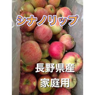 シナノリップ 家庭用 5キロ 長野県産 減農薬 化学肥料不使用 送料無料(フルーツ)