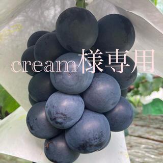 cream様専用  ブラックビート3房(フルーツ)