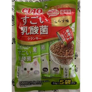 イナバペットフード(いなばペットフード)の✴️新発売✴️♡CIAOすごい乳酸菌クランキー猫のごはん しらす味♡(ペットフード)