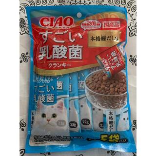 イナバペットフード(いなばペットフード)の✴️新発売✴️♡CIAOすごい乳酸菌クランキー猫のごはん 本格鰹だし味♡(ペットフード)