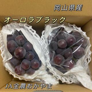 オーロラブラック 岡山県産 2房 約1.2kg   JAおかやま ぶどう(フルーツ)