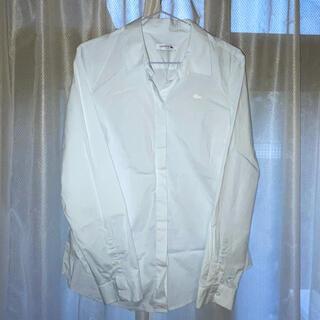 ラコステ(LACOSTE)のラコステ カッターシャツ 42 レディース(シャツ)
