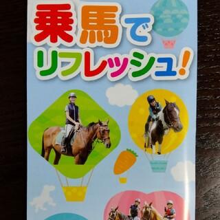 乗馬レッスン体験チケット(その他)