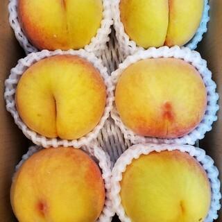 数量限定!! 大好評!! 別名「マンゴーピーチ」 福島県産「黄金桃」(フルーツ)