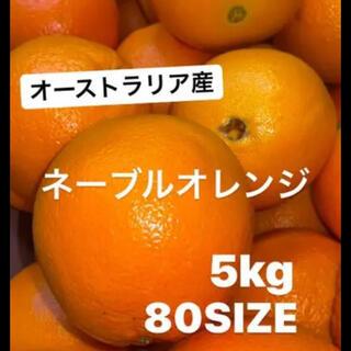 【激甘】ネーブルオレンジ5kg 全国送料無料(フルーツ)