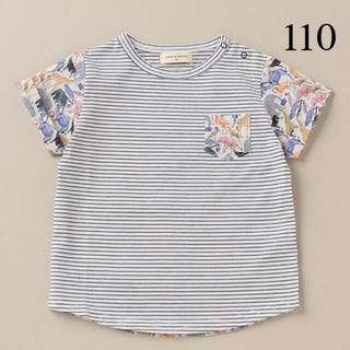 センスオブワンダー(sense of wonder)の新品 センスオブワンダー ZOO ボーダーTシャツ(Tシャツ/カットソー)