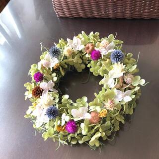 紫陽花のピンク&グリーンリース♡ドライフラワーリース(ドライフラワー)