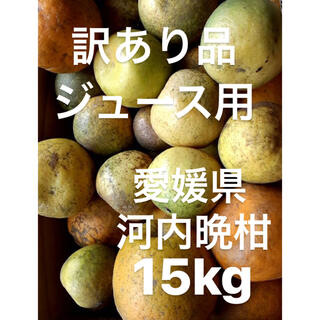 訳あり 愛媛県 宇和ゴールド 河内晩柑 ジュース用 15kg(フルーツ)