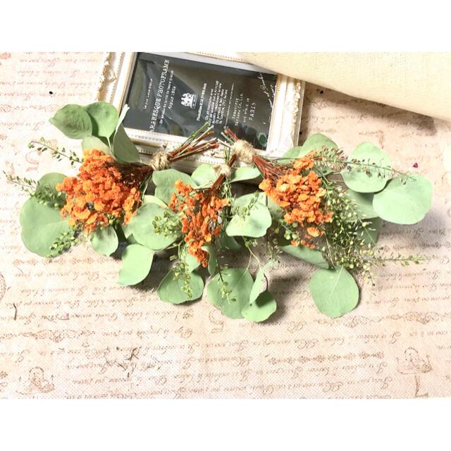 ナチュラルドライフラワー 0826-3 ユーカリポポラスとかすみ草のミニスワッグ ハンドメイドのフラワー/ガーデン(ドライフラワー)の商品写真