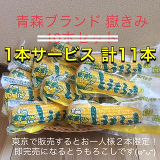 青森ブランド 嶽きみ とうもろこし 真空 11本 日本一 甘い うまい 美味しい(野菜)