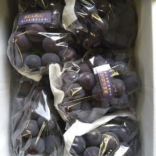 ④ブドウ 岡山県産 紫玉2k 1箱(5〜6房入)(フルーツ)