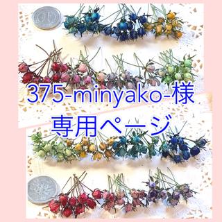 375-minyako様専用ページ(ドライフラワー)