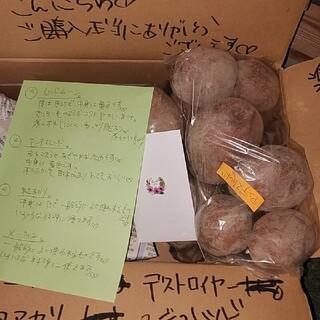 おじいちゃんの無農薬 じゃがいも❤4種 食べ比べ❤4キロ送料込み1800円(野菜)