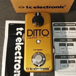 TC ELECTRONIC Ditto Looper Gold ルーパー 限定(エフェクター)