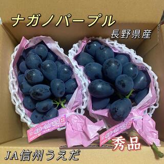 ナガノパープル 2房 秀品 長野県産 ぶどう(フルーツ)