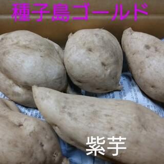 種子島ゴールド 2キロ(野菜)