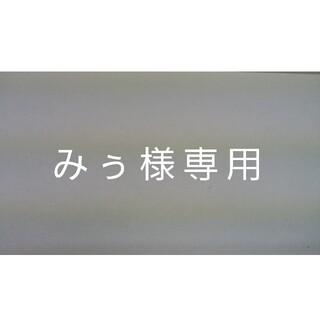 みぅ様専用(その他)