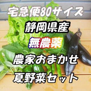 80サイズ*送料無料*静岡県産*無農薬*夏野菜詰め合わせセット*農家直送(野菜)