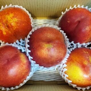 甘みと酸味、これぞネクタリン。信州中野産「大玉ファンタジア」(フルーツ)
