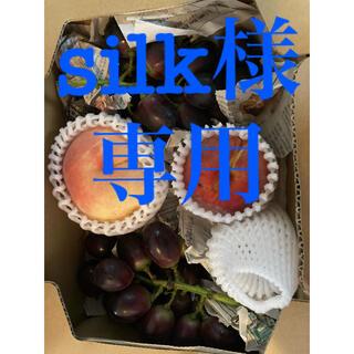 silk様専用 ナガノパープル他(フルーツ)