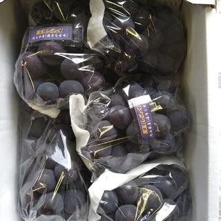 ⑩ブドウ 岡山県産 紫玉2k 1箱(5〜6房入)(フルーツ)