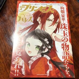 アキタショテン(秋田書店)の月刊プリンセス パレスvol6(キャラクターグッズ)