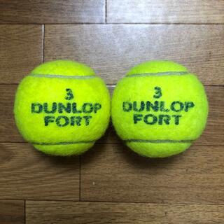 ダンロップ(DUNLOP)のダンロップテニスボール 2個    送料無料(ボール)